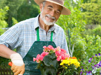 Senior man with the flowers in his garden